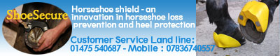 http://www.shoesecure.com/