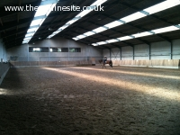 Horse sportstable company for sale