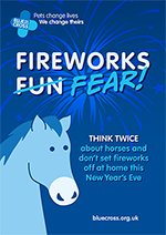 Blue Cross Call To Ditch New Year's Eve Fireworks